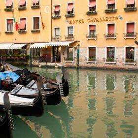 Venice 3D50