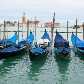 Venice 3D65