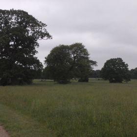 UK 2012 3D