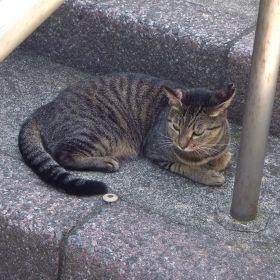 (temp) 2012.09.07 徒然
