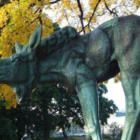 Helsinki autumn
