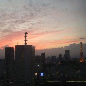 (temp) 2012.10.11 徒然