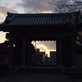 (temp) 祇園寺 2012.11.24