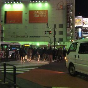 (temp) 2012.12.06 徒然