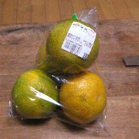 (temp) 果物