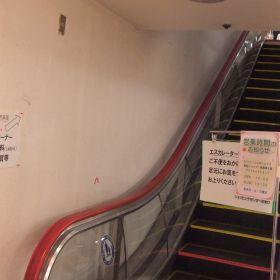(temp) 2013.03.22 @ 水戸
