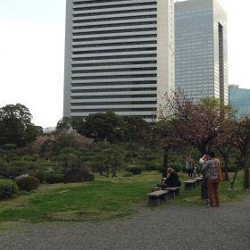 (temp) お花見 @ 旧芝離宮恩賜庭園 2013.04.04