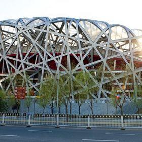 Nest stadium