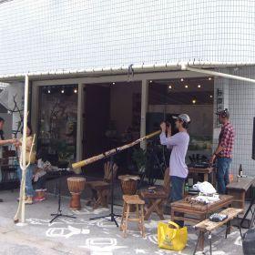 (temp) 2013.05.04 09.石垣ペンギン