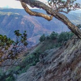 Waimea Canyon, HI
