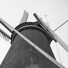 Windmill De Valk Leiden 3D