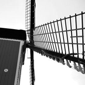 Mill De Put Leiden 3D