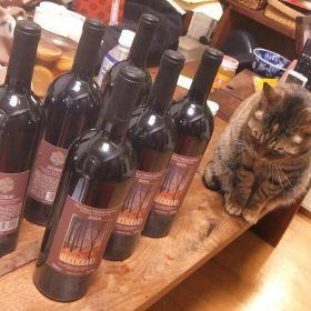 (temp) 葡萄酒 2013
