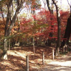 Heirinji Temple Garden