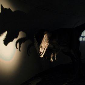 Dinosaurs expo