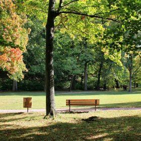 Осенью на пруду в парке Готы