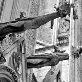Cathedral Notre-Dame Paris 3D