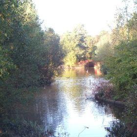 Forest Park Bracknell