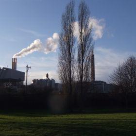 Dordrecht Industry
