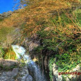 Fonts del riu Algar