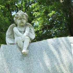 Cemetery Stills