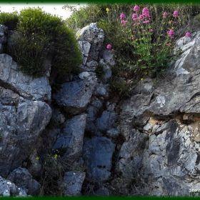 Landscape_Paysage_Tablet
