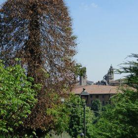 Bergamo 2016
