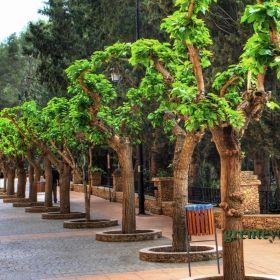 Calasparra, Spain.