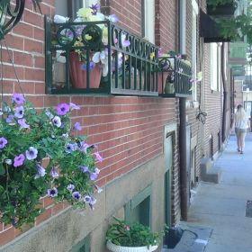 Freedom Trail in Boston Massachusetts