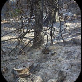 Haifa fire aftermath