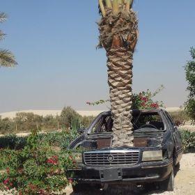 Dhahran - الظهران