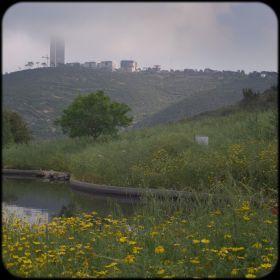 Haifa HaiBar 2017-04-15