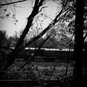 Day Train