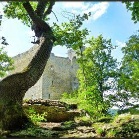 ... Castle Ruin Reußenstein ...